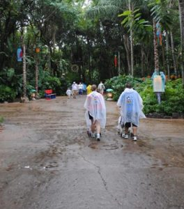 a rainy day at WDW