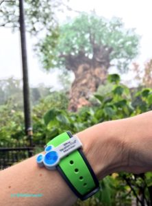 Magic Band with DVC slider