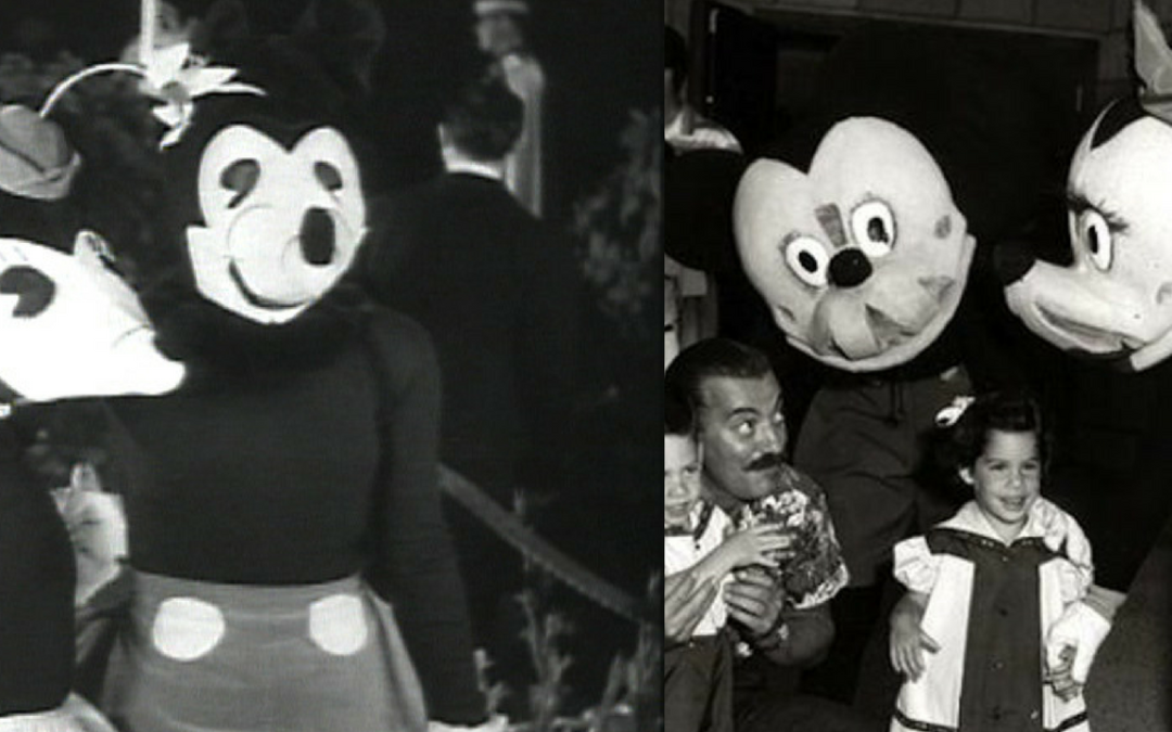 The D Files: Are Those Mickey Costumes Real?