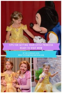 Tips for Getting Your Little Princess Ready to Visit WDW