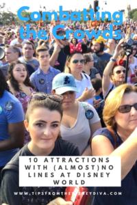 Disney World, Crowds, Short Lines, Magic Kingdom, Peak Travel
