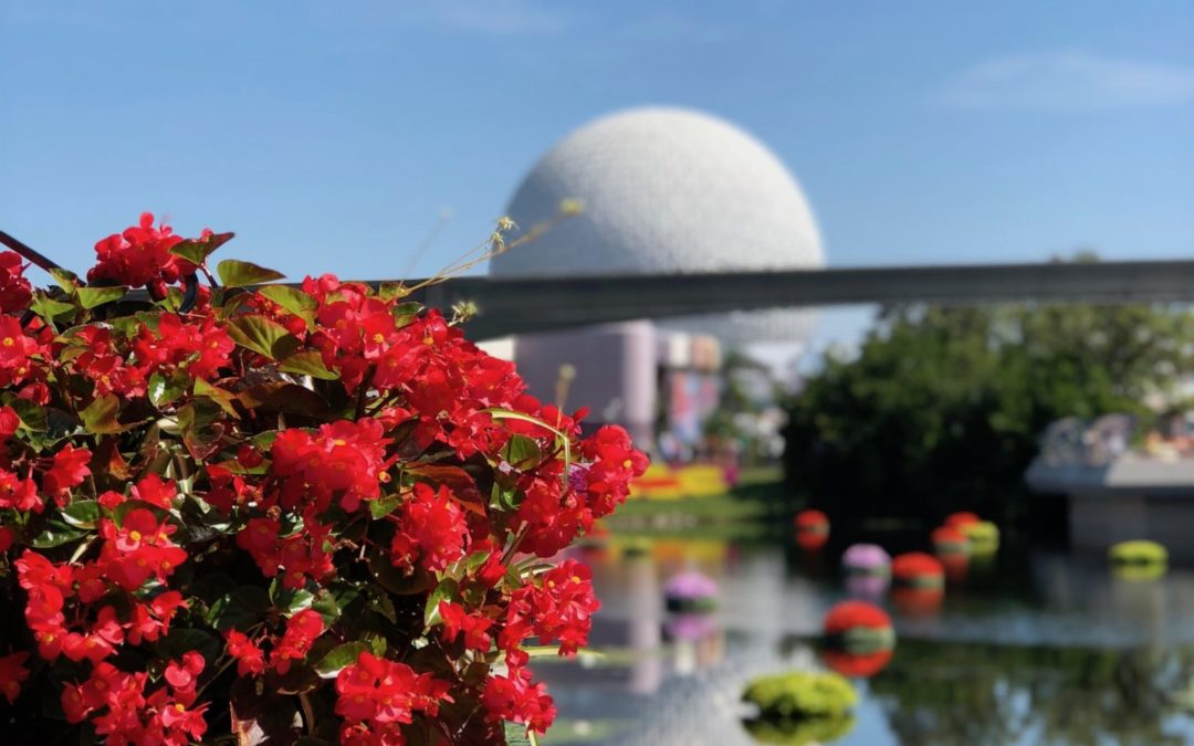 Favorite EPCOT Snacks and Quick-Service Foods