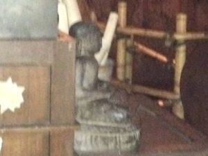 Disneyland Indiana Jones Adventure Review