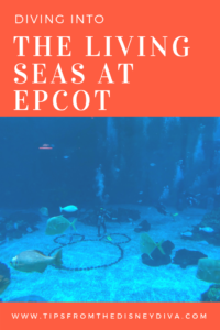 Dive into the Living Seas at Epcot