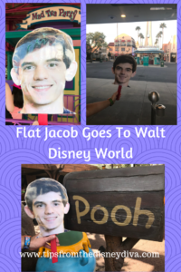 Flat Jacob Goes to Disney World