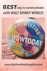 Disney World, Walt Disney World, WDWTODAY Twitter team, Twitter, Social Media, Disney World on Twitter, Twitterverse, Compliment Walt Disney World, Cast Compliment, Cast Member Compliment, Social Media Influencer, Social Media Blogger, Disney Bloggers