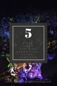 5 First Timer Tips for Surviving Animal Kingdom