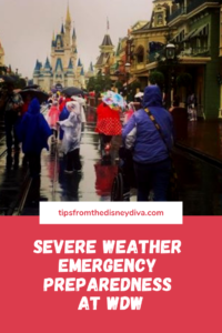 Severe weather emergency preparedness at wdw