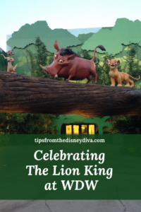 celebrating the lion king at wdw