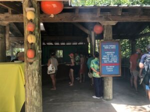 Serenity Bay: Castaway Cay's Island Oasis for Adults