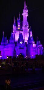 WDW Disney Castle