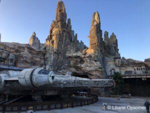 Disneyland 2020 Review