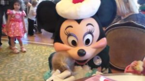 Maximizing your Character experience at Disneyland