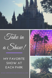 Take in a Show: My Favorite Show at Each Park - Walt Disney World Resort