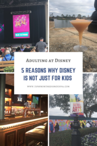 5 Reasons Why Disney Is not Just For Kids - Walt Disney World Planning for Adults