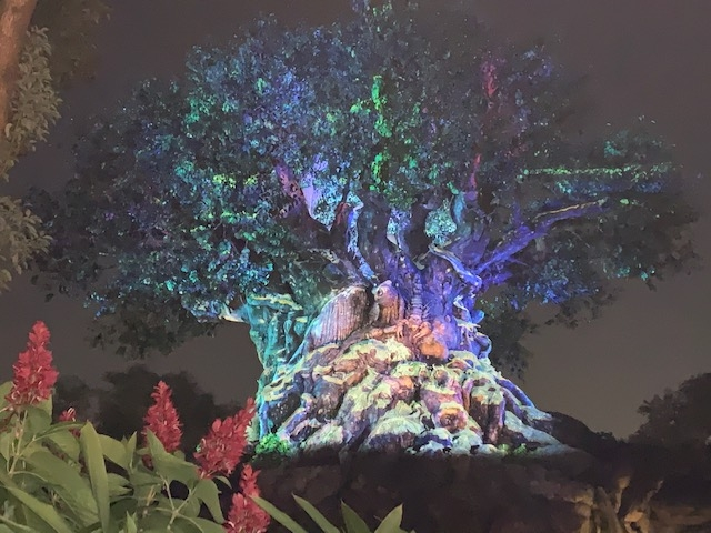 Celebrate the Holidays at Animal Kingdom