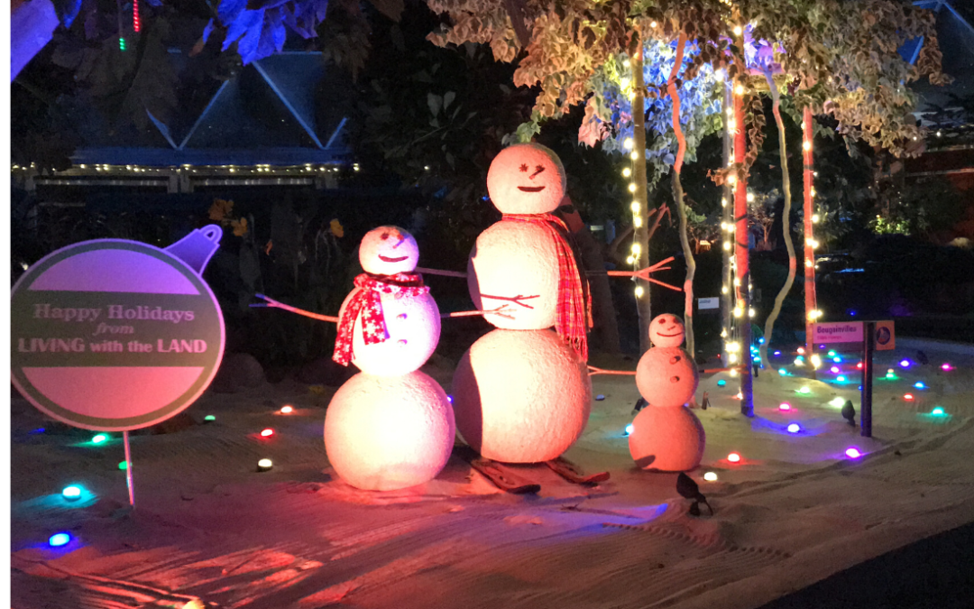 9 Things to Do (Besides Eat!) at Epcot International Festival of the Holidays
