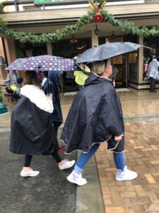 Rainy Day at Disneyland