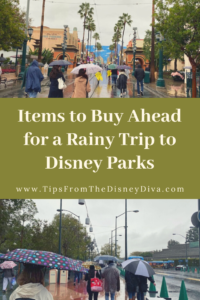 Items to Buy Ahead for a Rainy Trip to Disney Parks