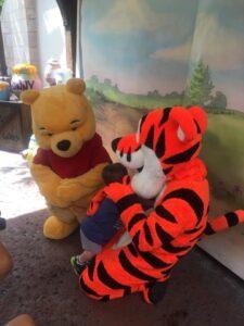 Pooh Bear and Tigger Meet and Greet