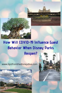 COVID-19 and Disney Parks