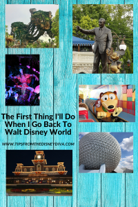 Disney Park Reopenings