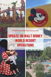 Update on Walt Disney World Resort Operations, World Disney World Resort,