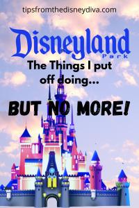 Disneyland The Things I Put Off Doing