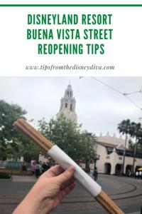 Disneyland Resort Buena Vista Street Reopening Tips